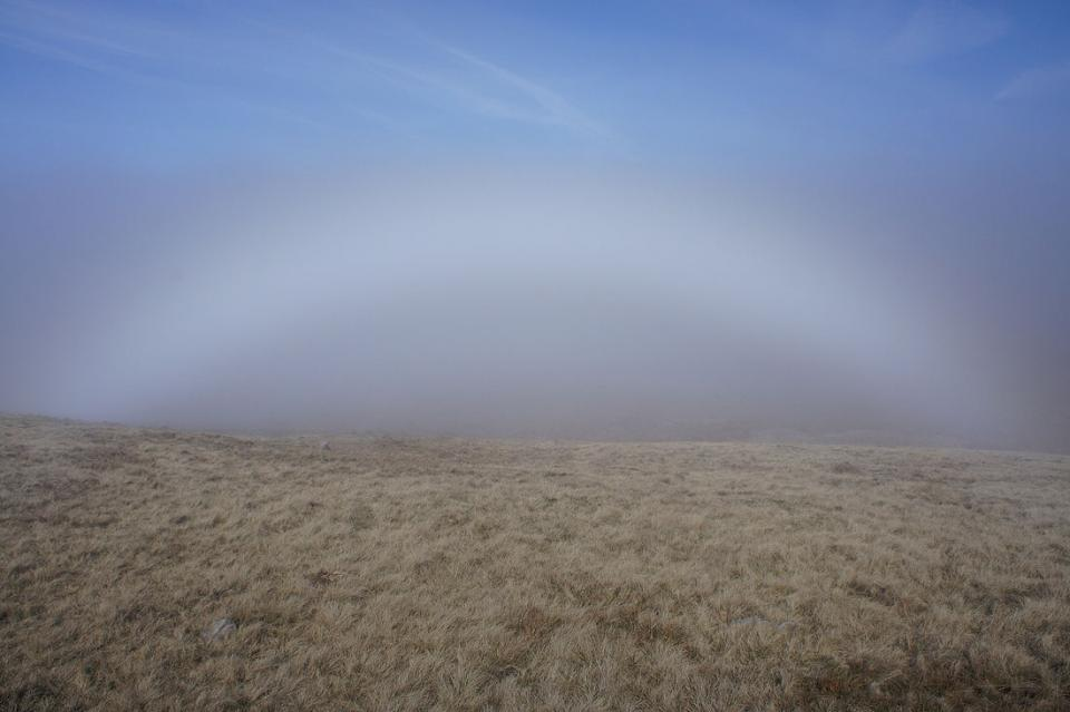 Fogbow on Pendleton Moor