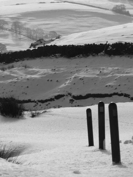 Black and white snowy pendle