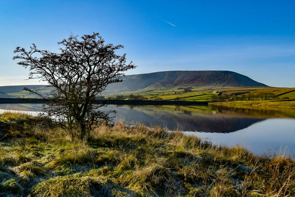 Black Moss and Pendle Hill