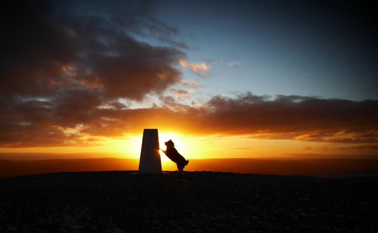 Molly at sunsrise on Pendle Hill