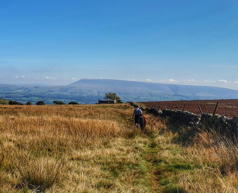 Pendle hill from across the valley
