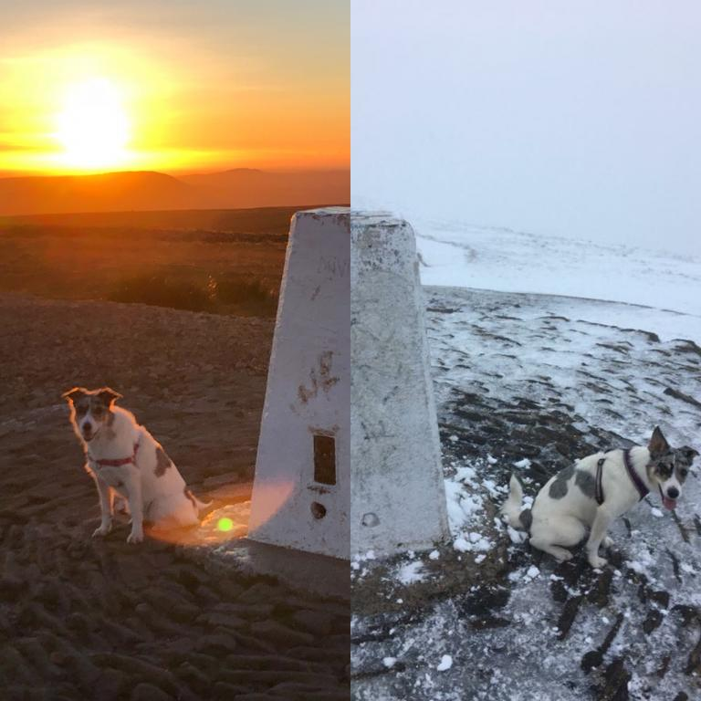 Early autumn sunset and icy winter trig