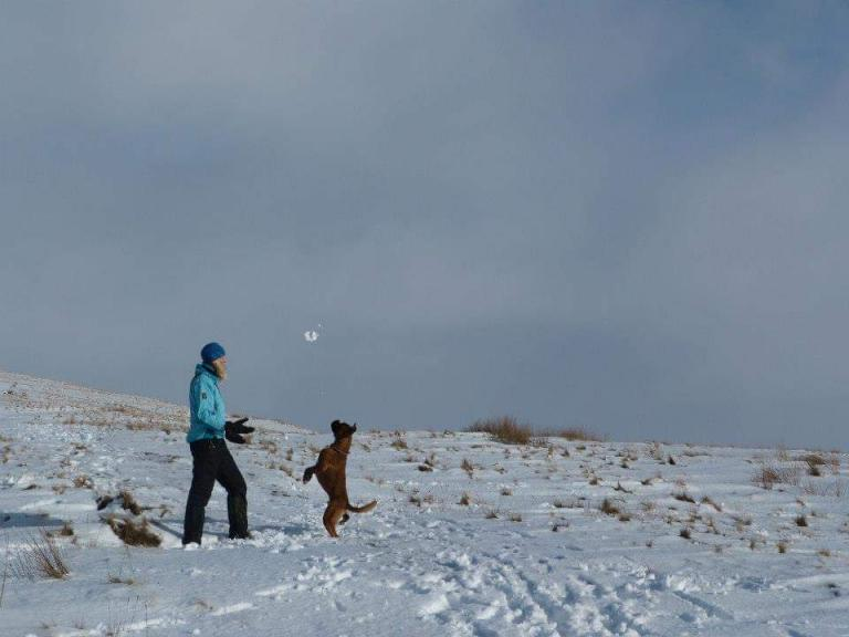 Snow fun with my boxer