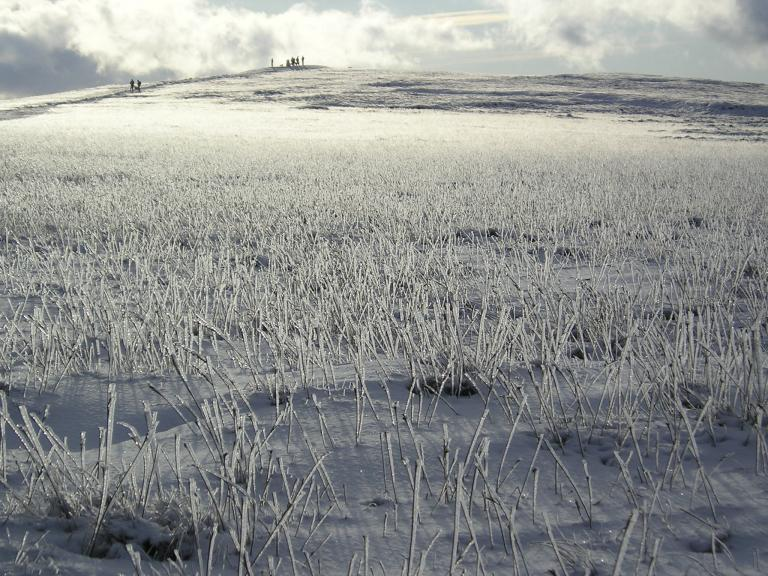 trig point in the distance -taken a few years back
