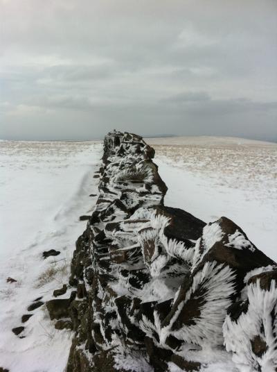 Winter © Ian Clarke