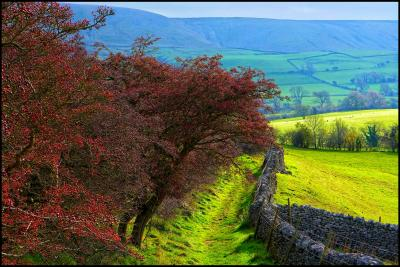 View of Pendle Hill taken from a trail on the Clitheroe side © Mustafa Desai