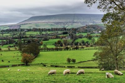 Pendle Hill viewed from Downham © Mustafa Desai